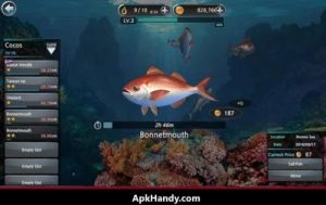 Fishing Hook Mod APK 2021 Latest (Unlimited Money) For Android 3