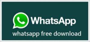 DOWhatsApp Apk Latest v1.70 Download 2021-ApkHandy 1