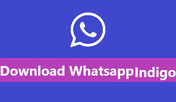Whatsapp indigo
